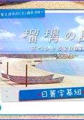 瑠璃之岛特别篇2007 海报