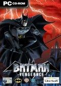 蝙蝠侠:复仇 海报