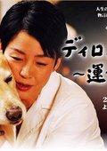 迪伦-命运之犬 海报