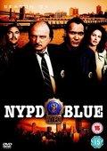 纽约重案组 第十二季 海报