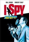 我是间谍 第一季 海报