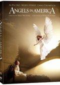 天使在美国 海报