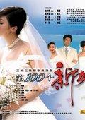 第100个新娘 海报
