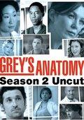 实习医生格蕾 第二季 海报