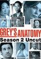 实习医生格蕾 第二季