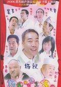 杨光的快乐生活Ⅱ 海报