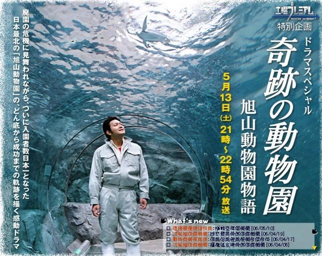 奇迹动物园 - 电视剧图片